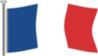 FRANCE National Flag 5x3'