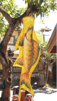 Windsock Golden Fish